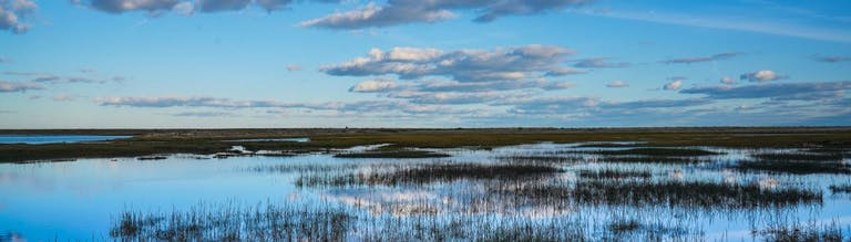 Water reflecting skies at Pagham Harbour