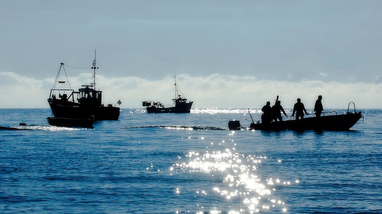 Four fishermen heading back to shore after a nights fishing