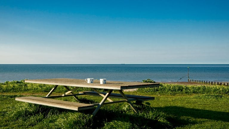 An image of two coffee cups on a picnic bench at Oval Field overlooking the blue sea on a sunny day