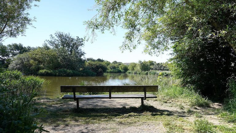 Image of a bench overlooking the waters at East Beach Pond