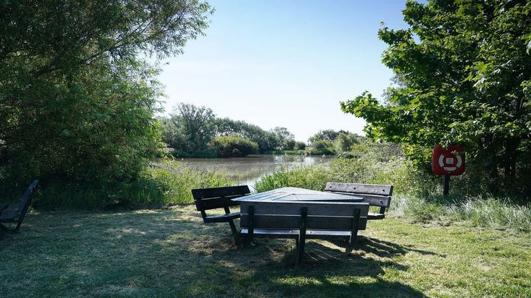 Image of picnic bench at East Beach Pond