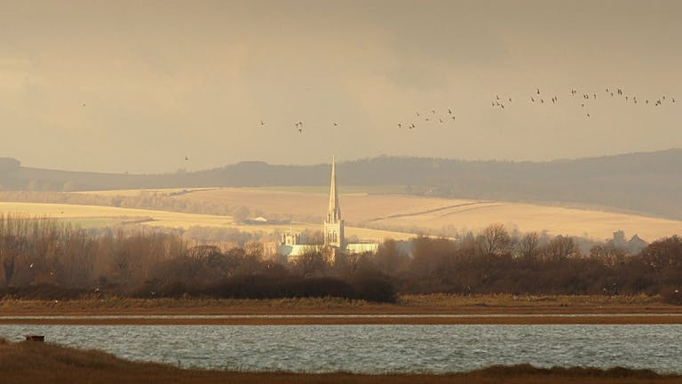 image of Chichester Cathedral viewed from Pagham Harbour with the downs in the background and a flock of birds overhead.