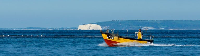 White cliffs onthe Isle of Wight in the background behind a yellow fishing boat
