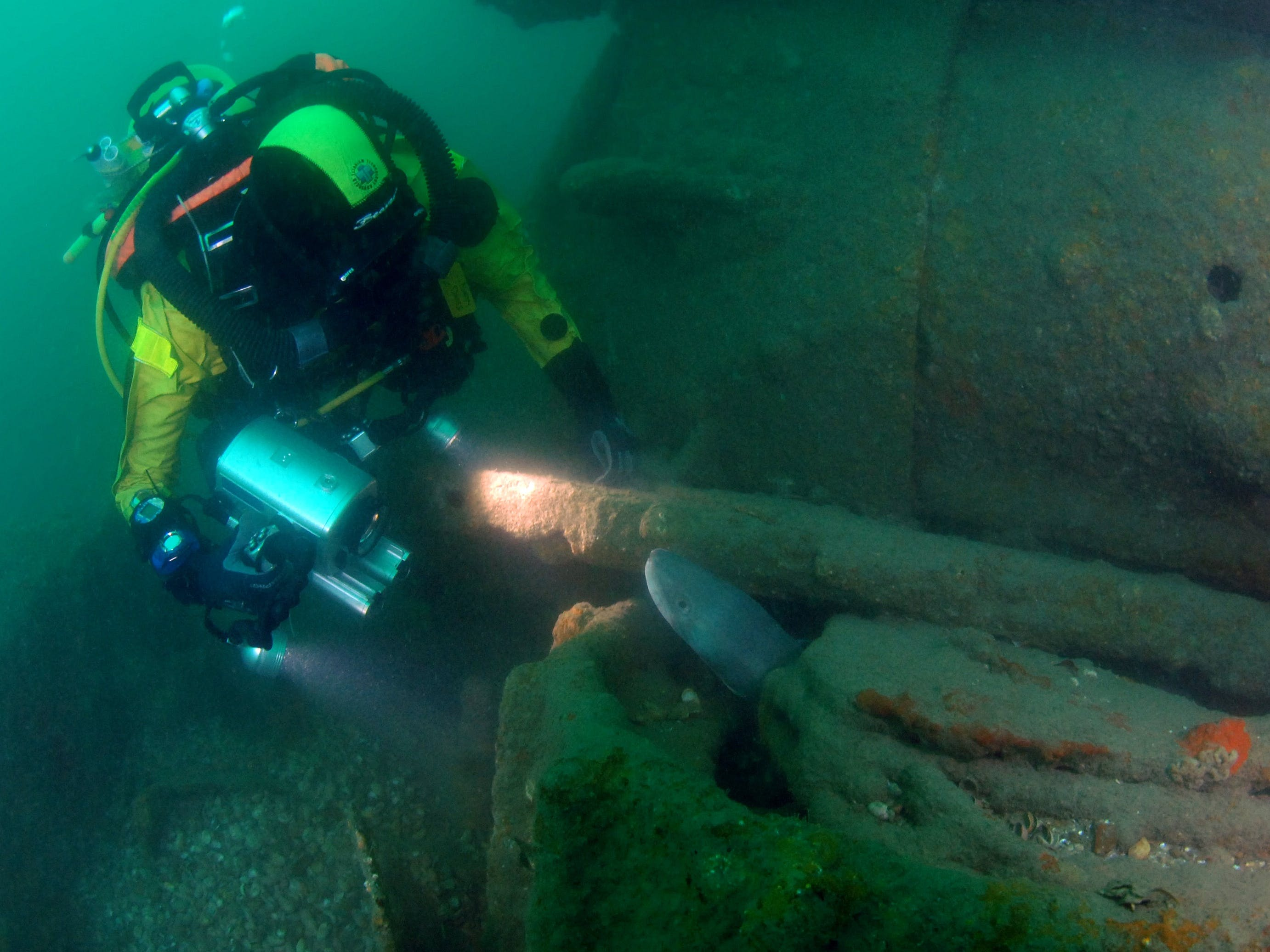 Image of a diver and the wreck of a tank, courtesy Martin Davies Day