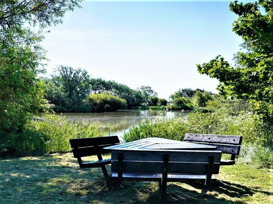 East Beach Pond, courtesy of CoastalJJ