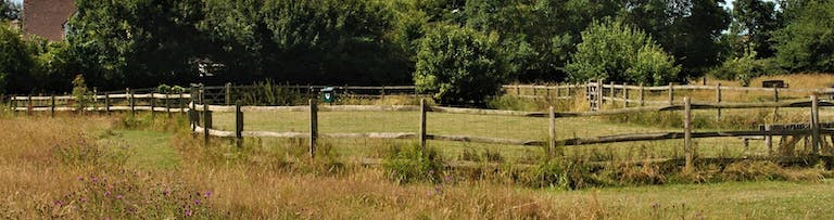 Fenced dog run at Manor Park, Selsey
