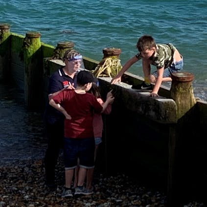 Children on the Marine Ecology Walk learning about the hidden creatures in the groynes