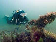 A diver investigating an anchor