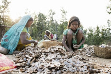 copy_of_india_mica_mine_girl_looking_collecting_mica_312x195_0.jpg