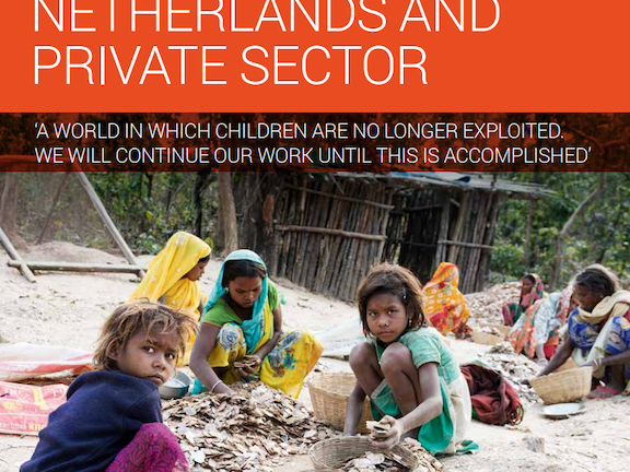 TDH Position Paper on Private Sector