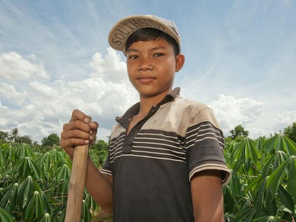Eigenaren van cassave plantages in Cambodja stoppen met kinderarbeid Terre des Hommes