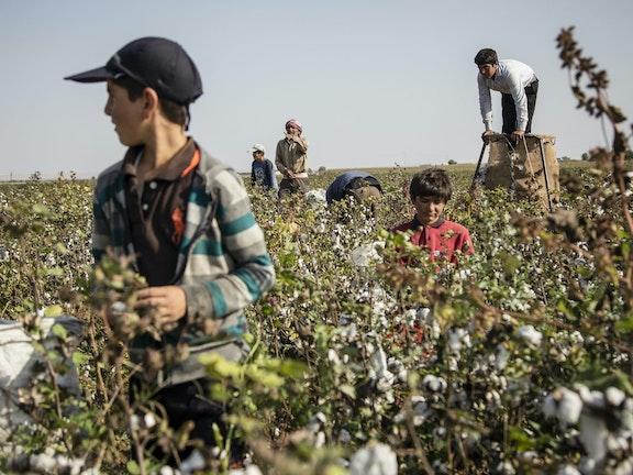 Terre de Hommes Kinderarbeid in Libanon