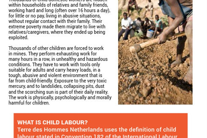 Factsheet about Terre des Hommes Netherlands' programme addressing the Worst Forms of Child Labour in East Africa.