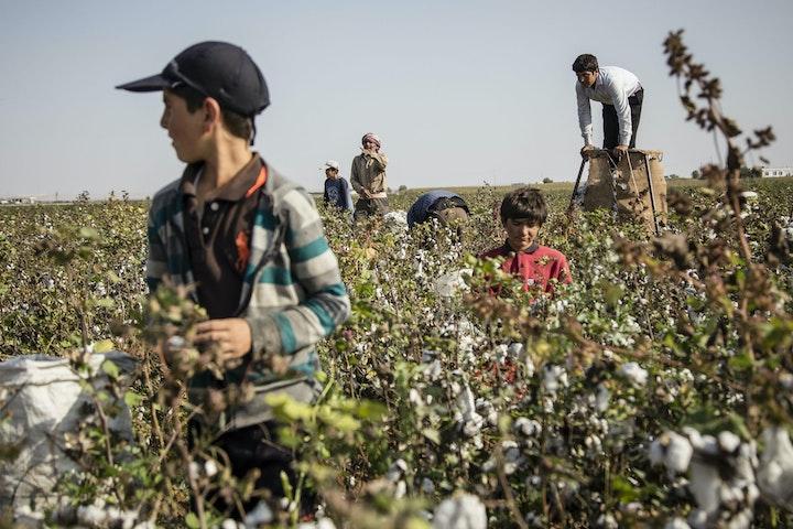 Terre des Hommes kinderarbeid Libanon