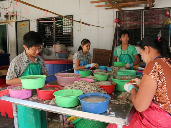 Child labour in the Thai shrimp industry