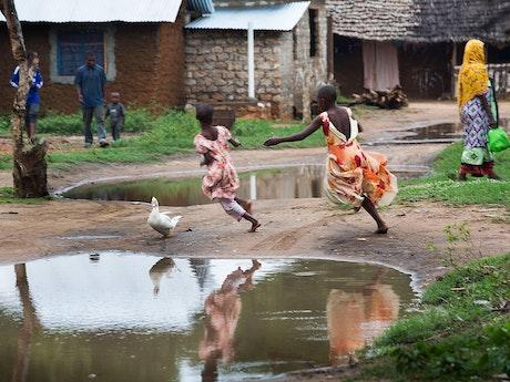 Village scene at the Kenyan Coast