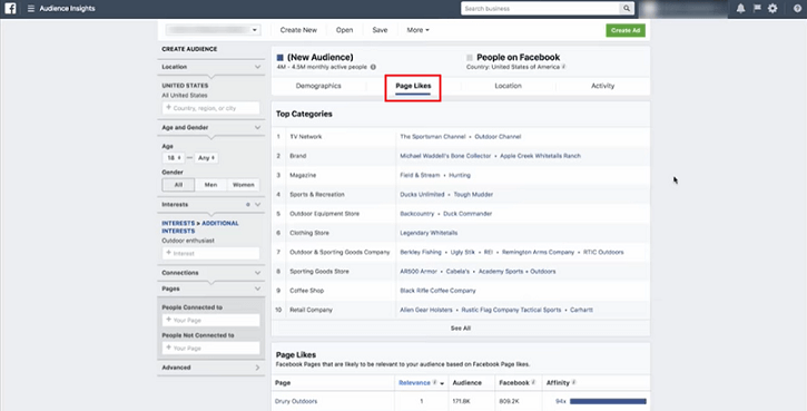 Page likes is an extremely relevant tab in Facebook Audience Insights