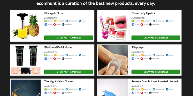 The homepage of Ecomhunt shows you winning products