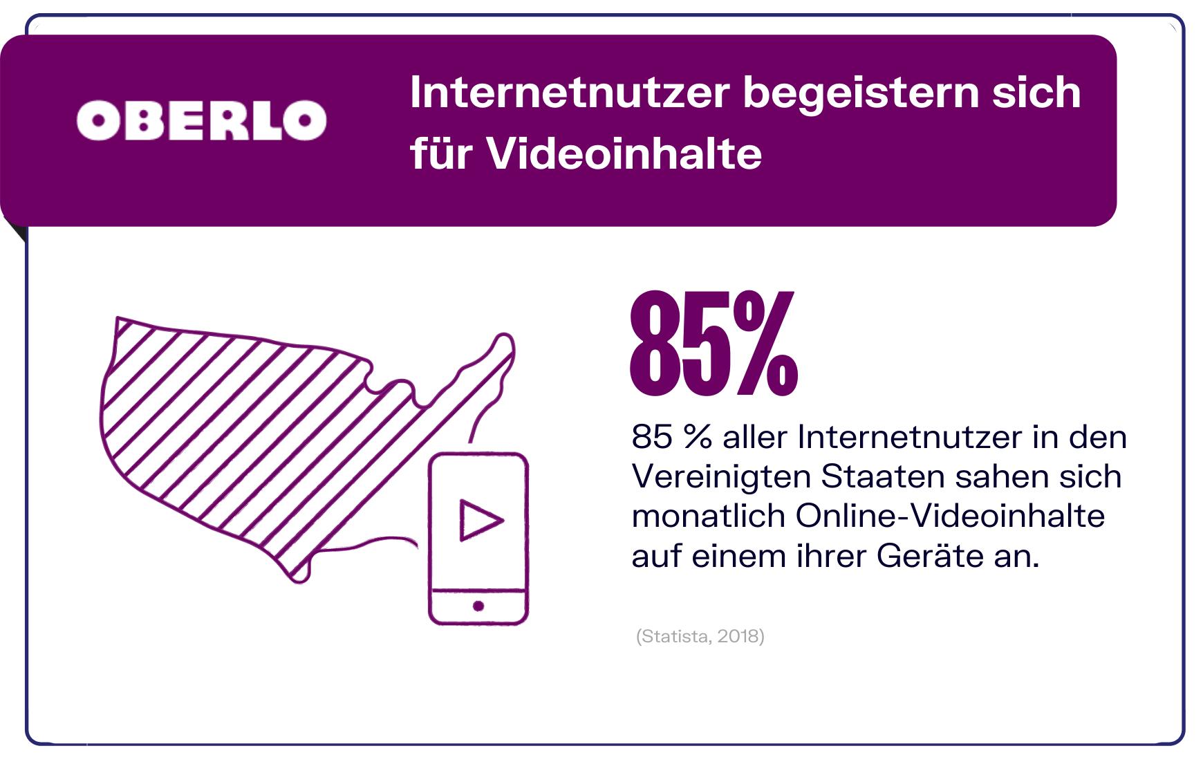 Video Marketing - Videonutzung