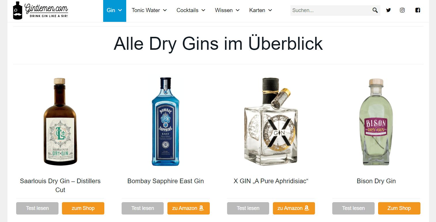 Mit Bloggen Geld verdienen - Beispiel Affiliate Marketing Gin