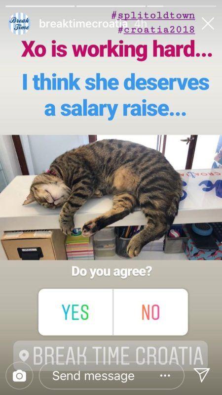 Instagram sondage