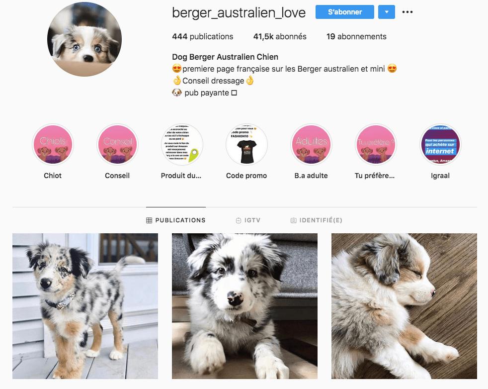 influenceur instagram