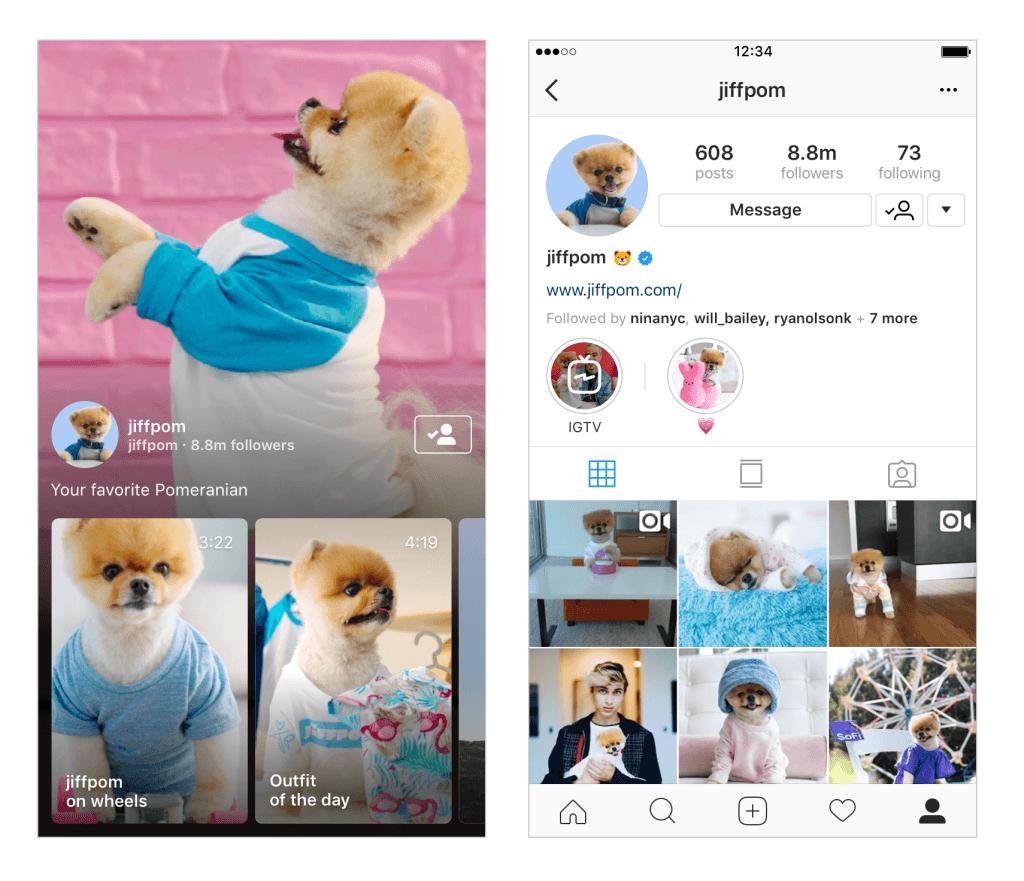 infleunceur instagram
