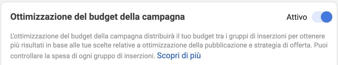 Ottimizzazione budget della campagna ads