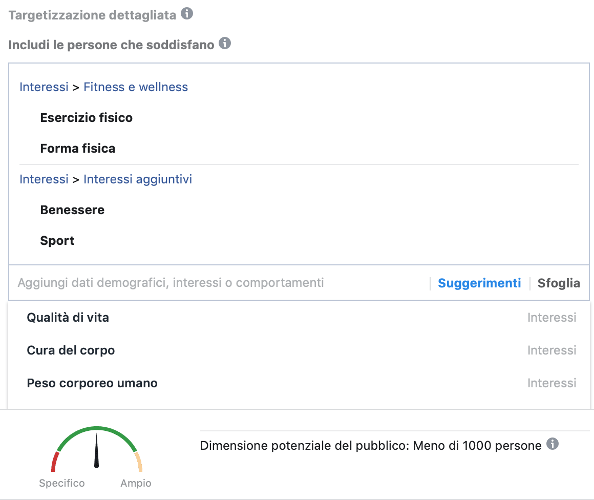 targhettizzazione facebook ads