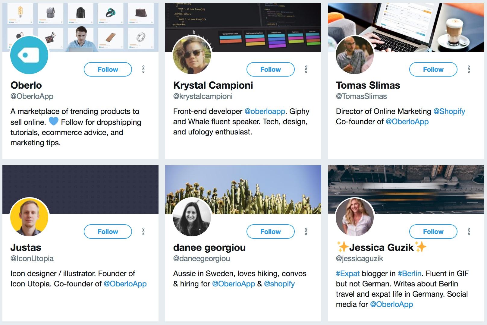oberlo app in bio - How to gain followers on twitter