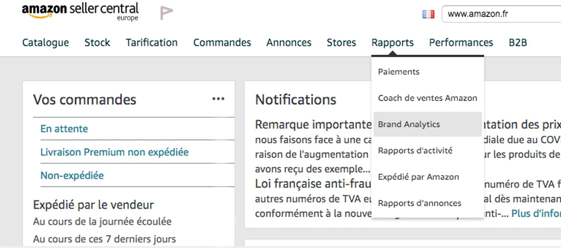 Onglet Brand Analytics dans l'interface Seller