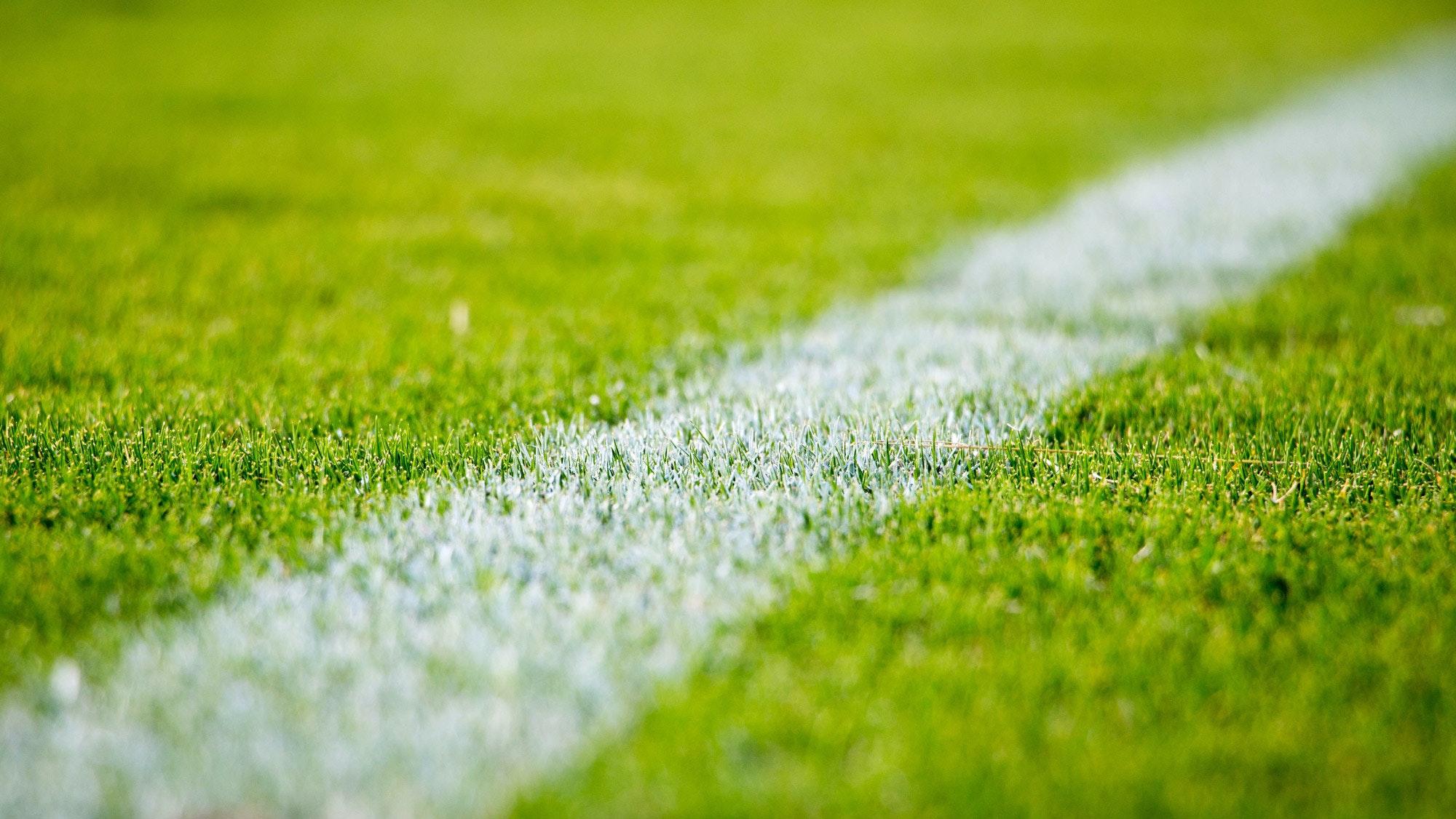 Gazon de football