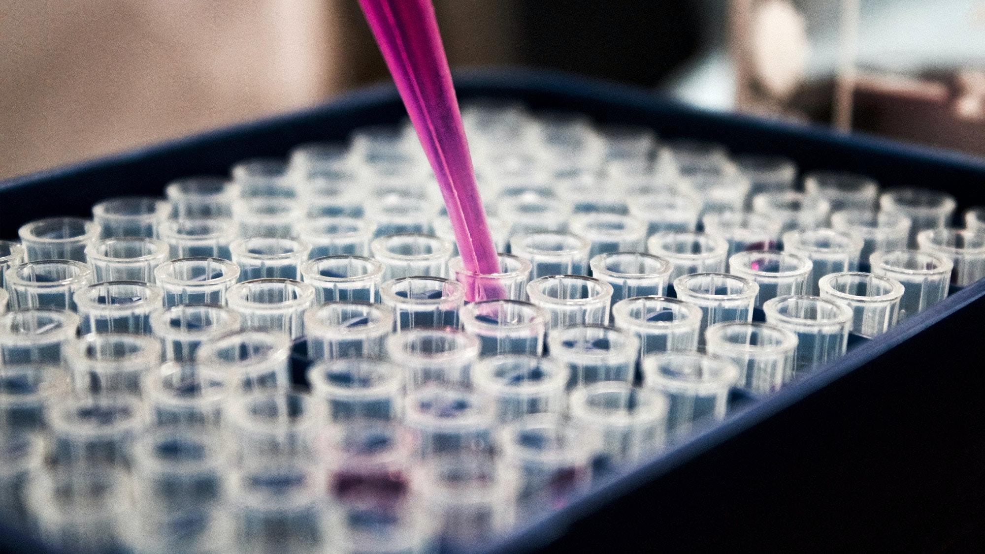 Test en laboratoire
