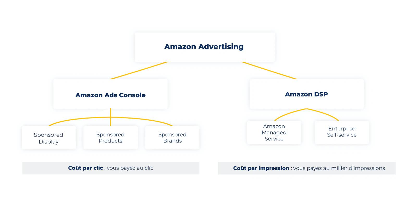 Graphique-Amazon-Advertising