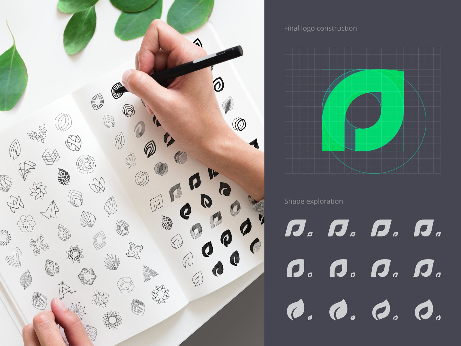 assetly logo sketches