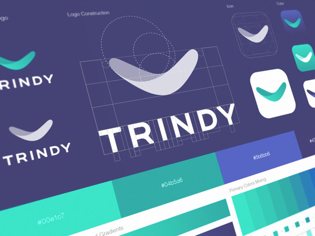 trindy logo construction