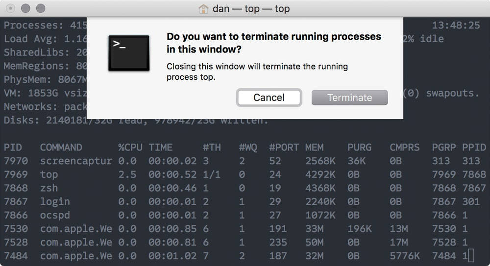 Terminal's modal confirmation, shown when closing a window or tab with a running process.