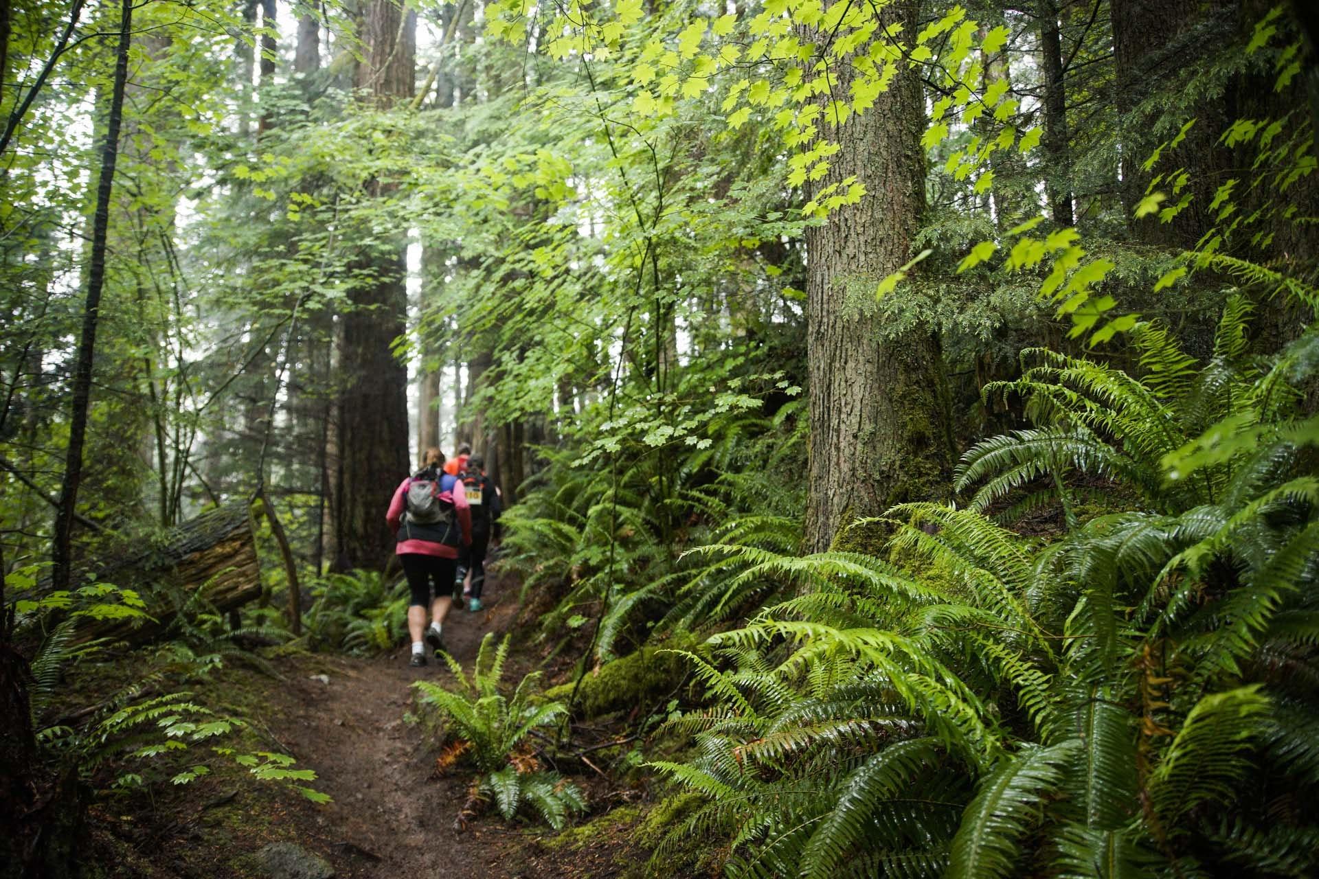 Trail/Ultra