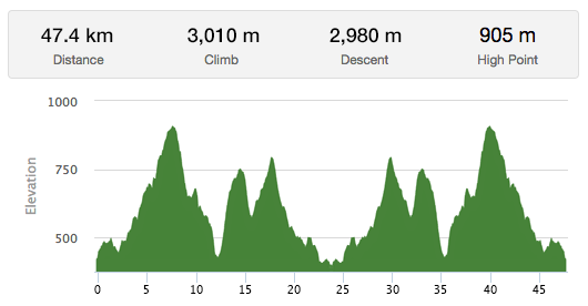50K Trail Run Elevation