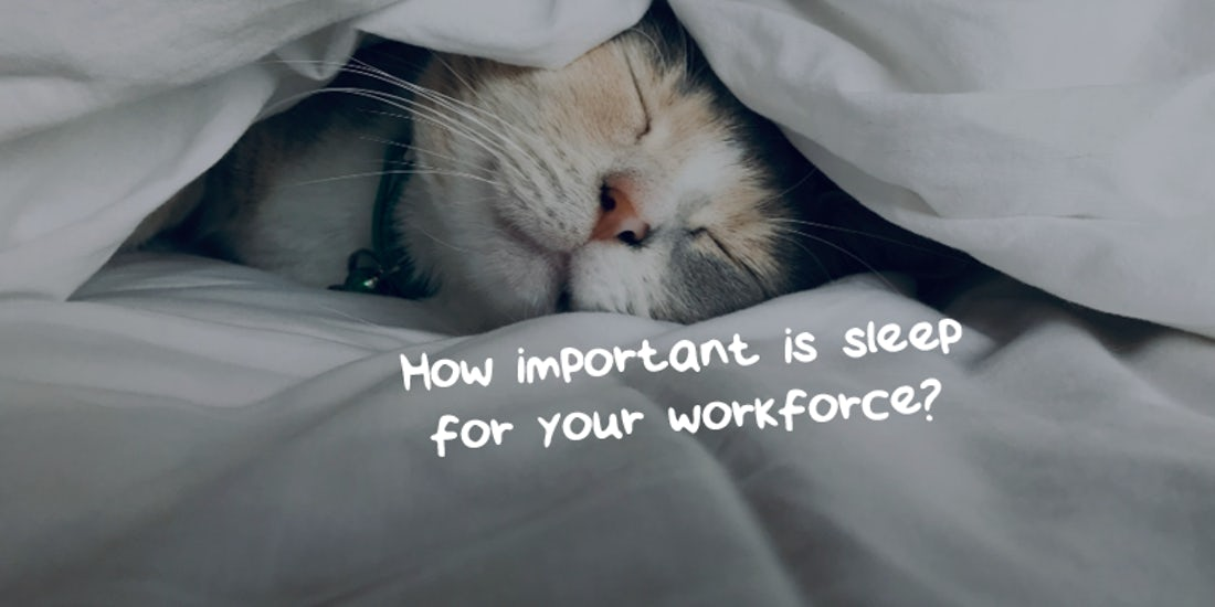 How important is sleep for your workforce? hero image