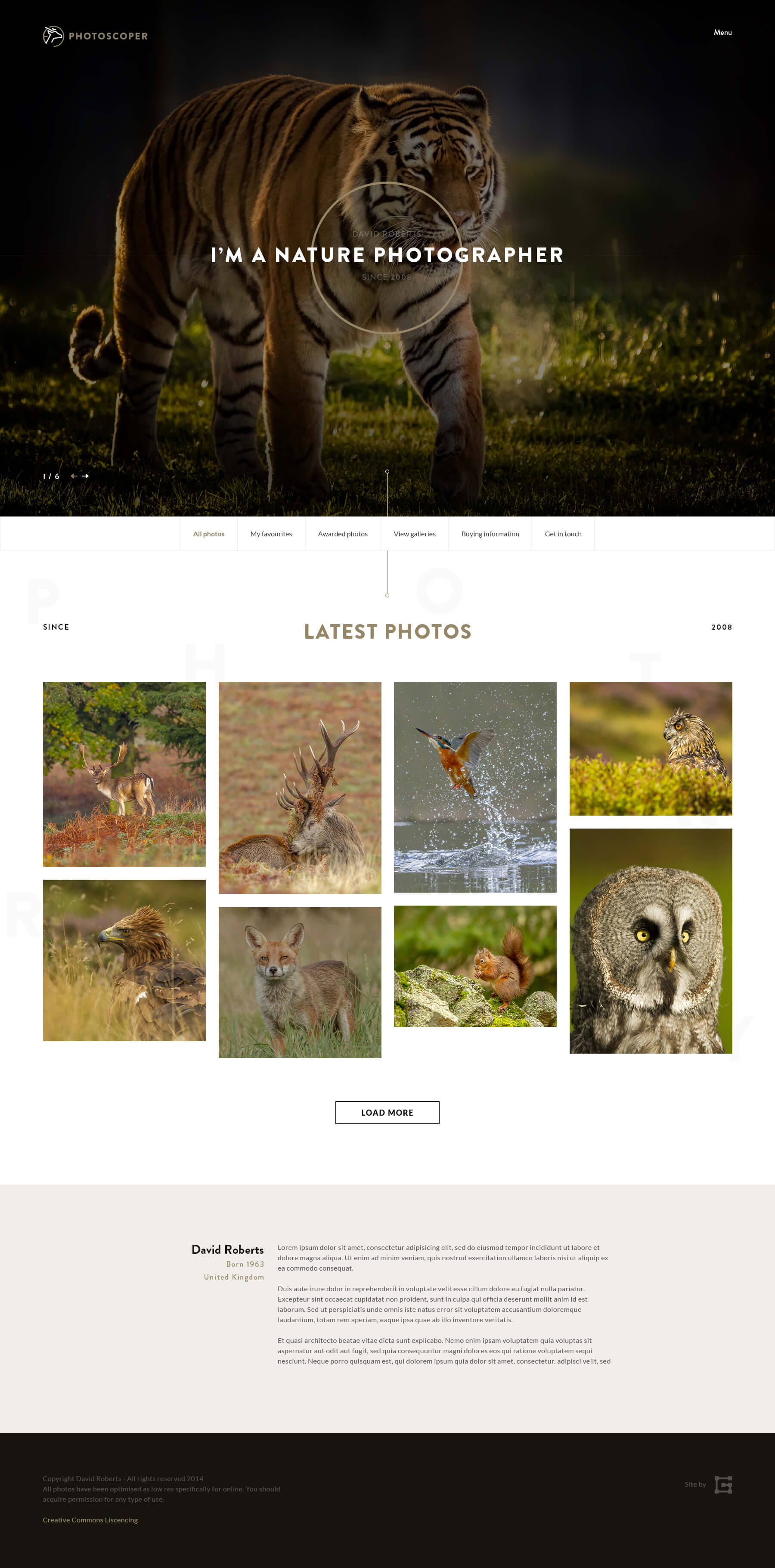 Photoscoper Homepage Design