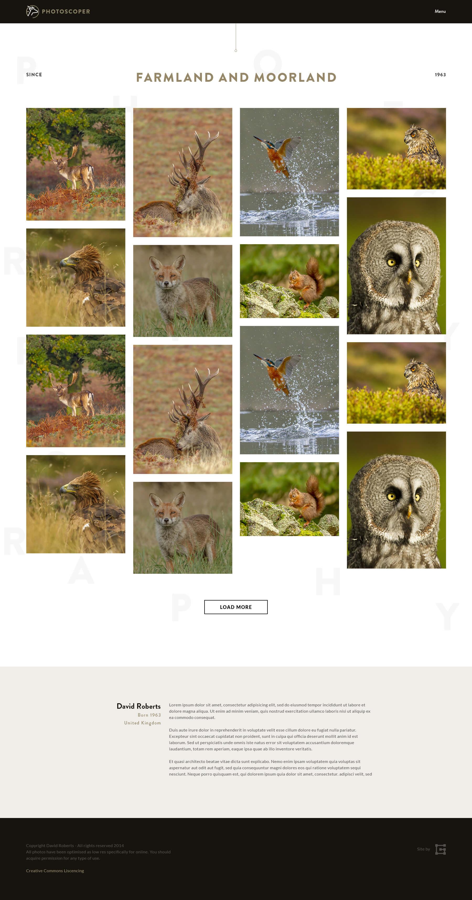 Photoscoper Gallery Page Design