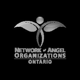 Network Angel Organizations