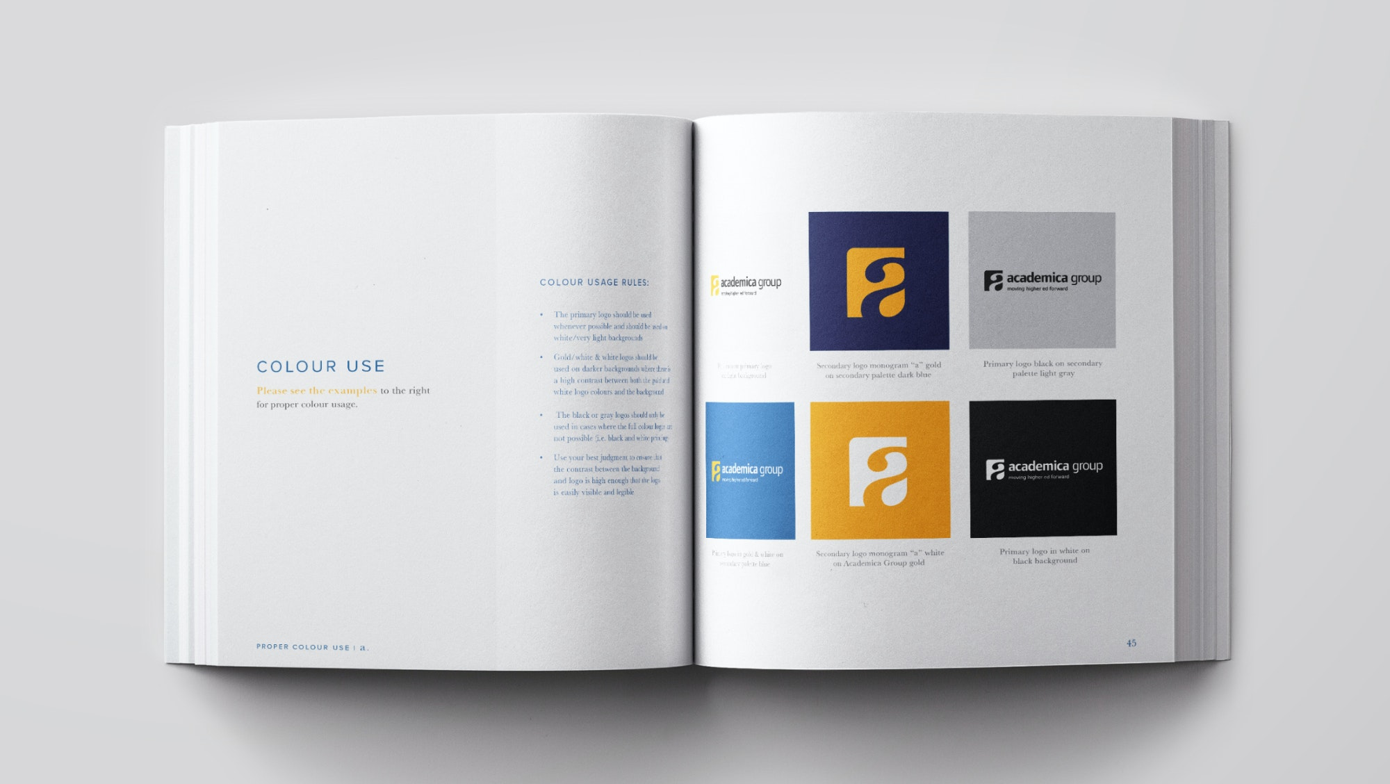Academica Brand Guide Colour Use
