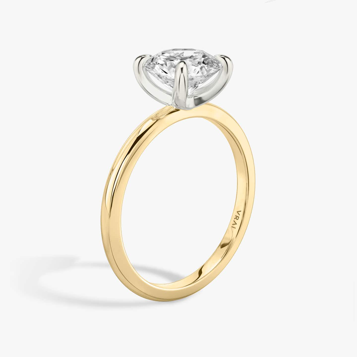 Closeup image of The Classic Two Tone Ring