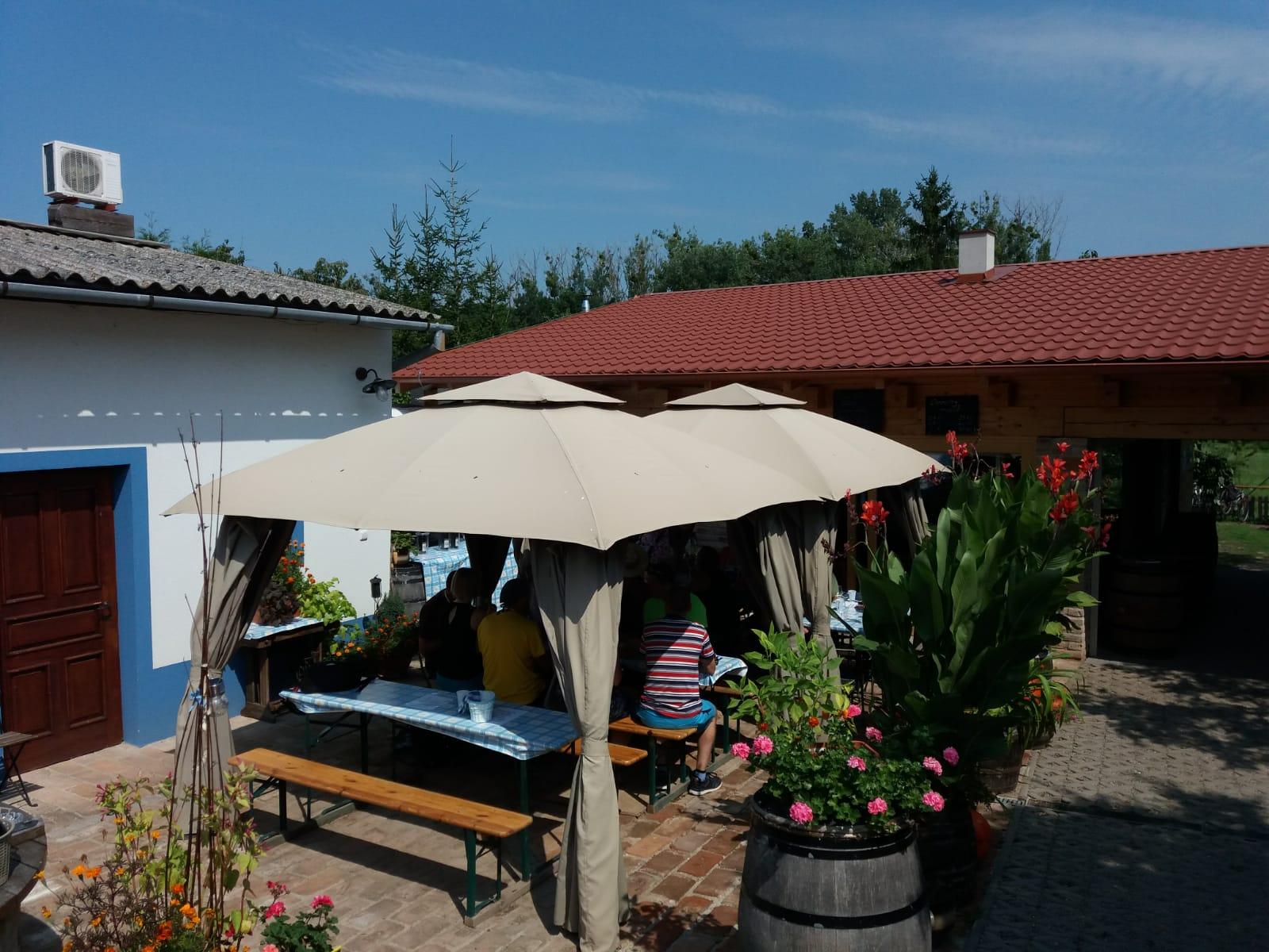 Vinobraní na Fuzgruntech