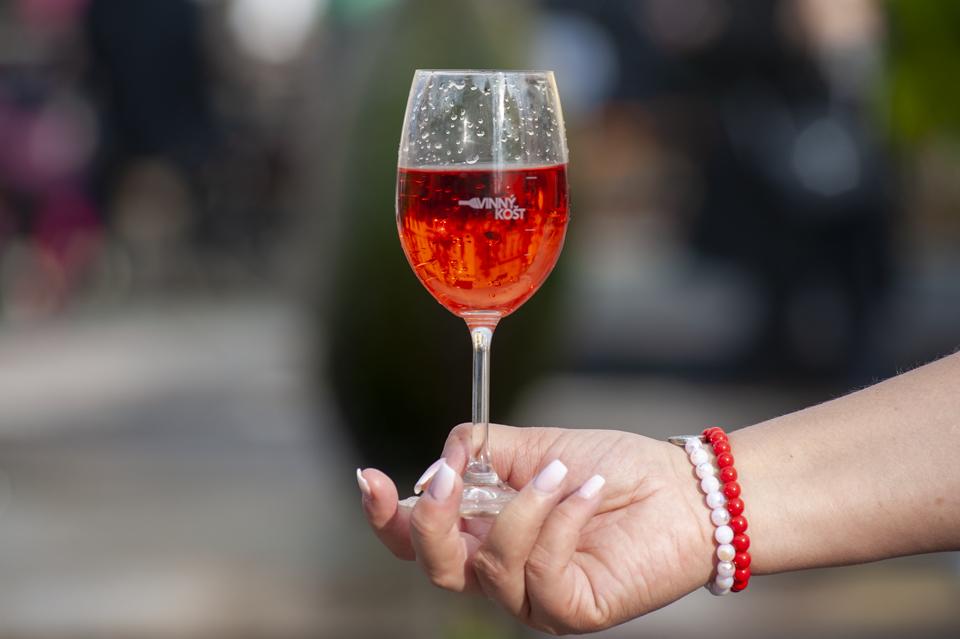 Vinný košt v Ústí nad Labem