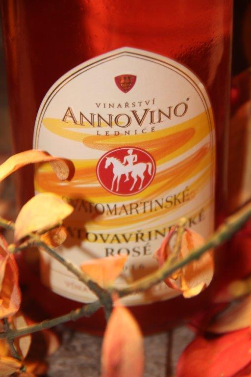 Svatomartinská vína v Domě Vína na Šalďáku