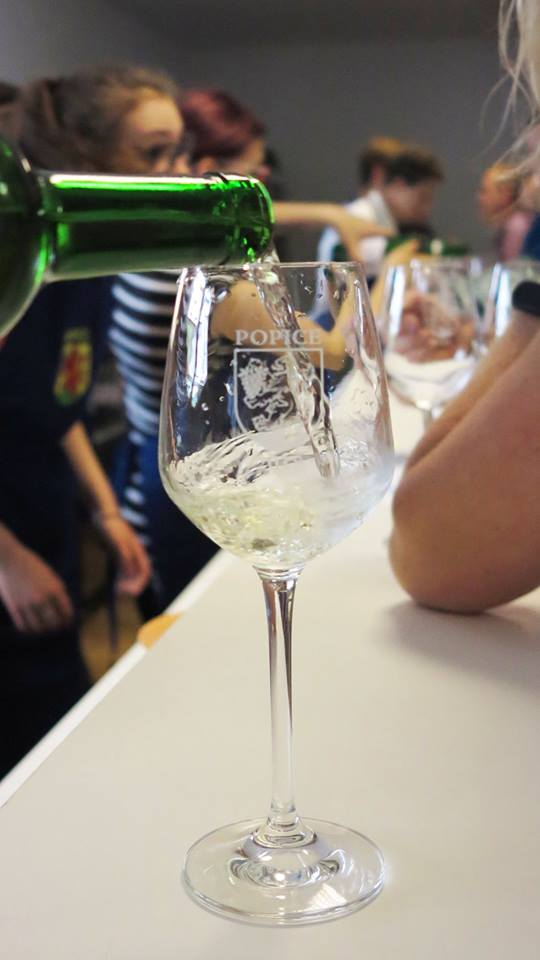 Místní výstava vín Popice