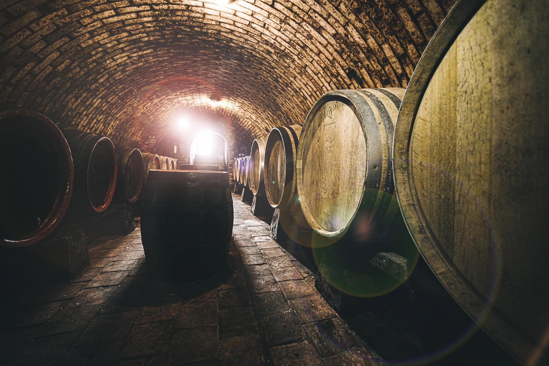 Okoštujte u vinařa